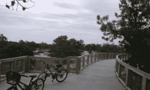 Metal bridge on gordon pond