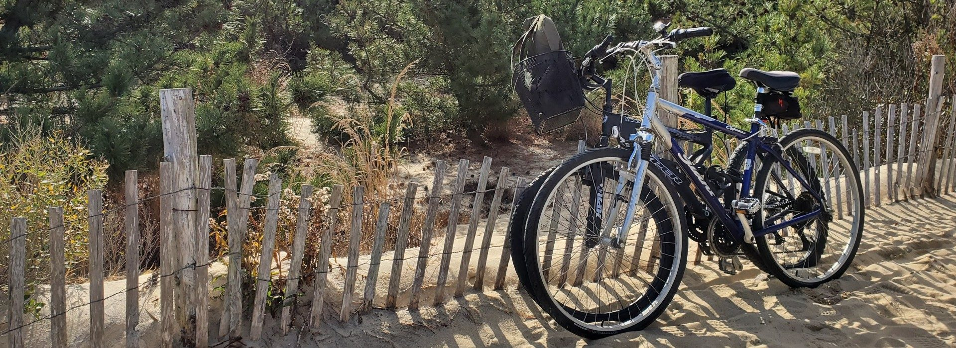 2 bikes, black and blue in the sand on walk way to beach
