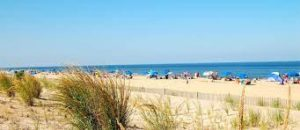 dewey beach white sand and people with umbrellas