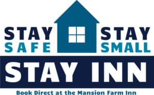 stay safe logo blue and dark blue
